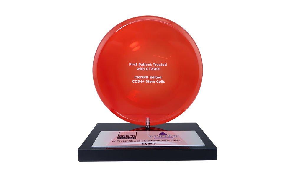 Pharmaceutical Industry Custom Team Award