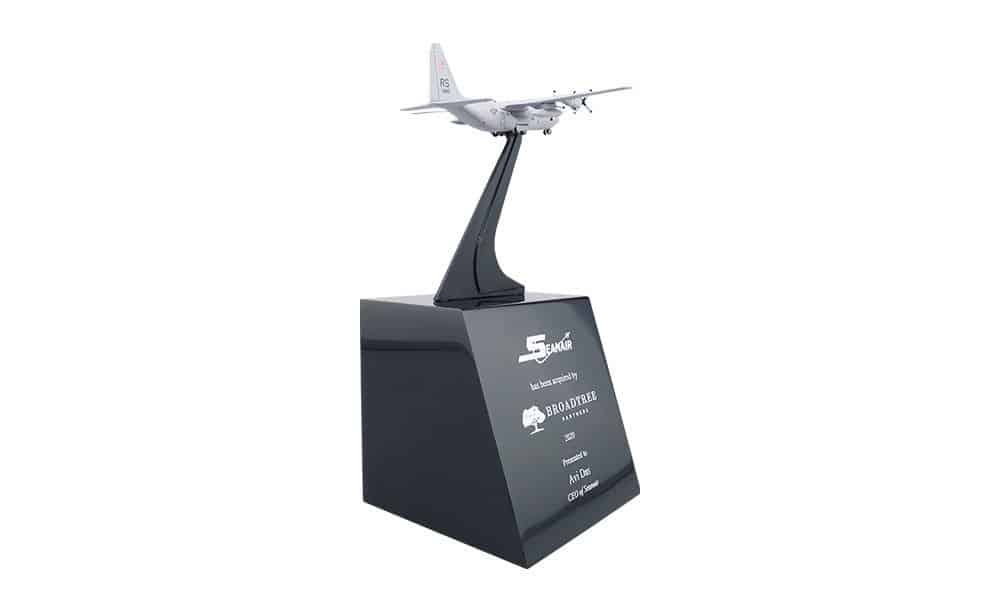 Plane-Themed Deal Toy